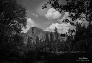 Yosemite_2010_299_B&W_w