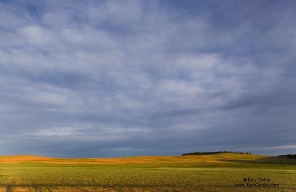 Wordless Wednesday: Pastel Landscape