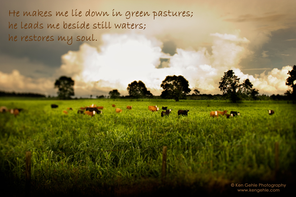 (c) Ken Gehle - Green Pasture