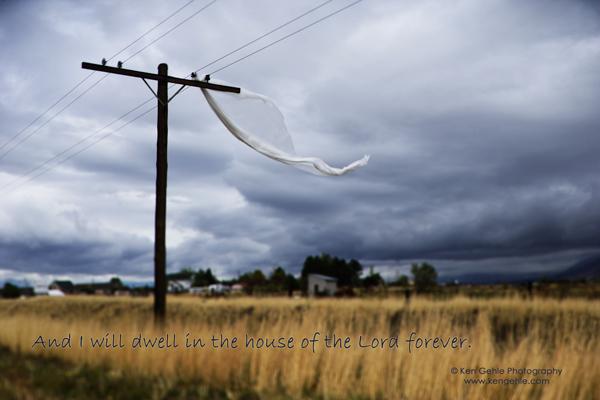 (c) Ken Gehle - Everyday Miracles (Utah)